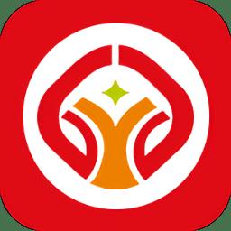 驾运宝app