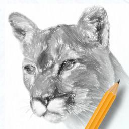 素描绘画入门教程软件