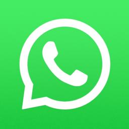 whatsappmessenger苹果手机版(暂未上线)