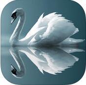 镜子相机苹果手机版(Mirrorart)