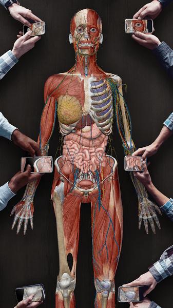 2021人体解剖学图谱苹果版