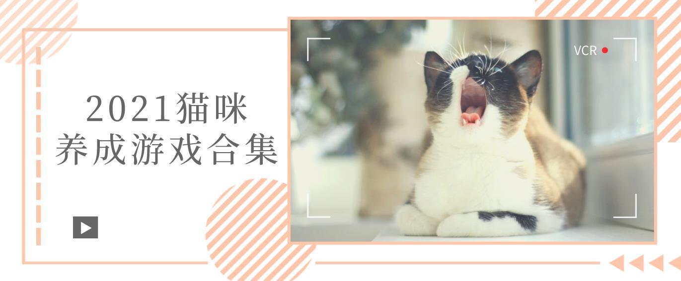 猫咪养成游戏合集-可以互动的猫咪养成手游-2021可以撸猫的游戏