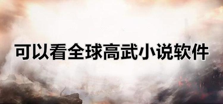 可以看全球高武小说软件