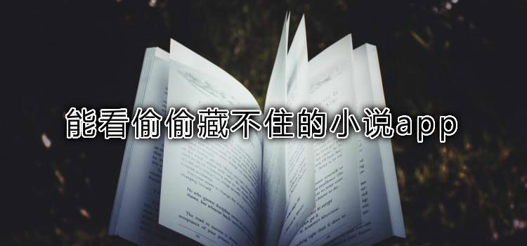能看偷偷藏不住的小说app